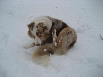 Schneekugeln am Bein ;-)