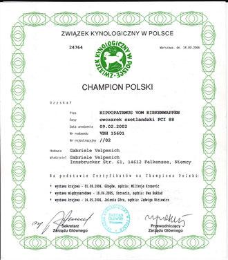 Polnischer Champion