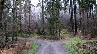 Deutschland Sauerland Rothaarsteig outdoor-pur