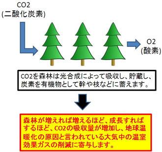 森林の地球温暖化防止機能
