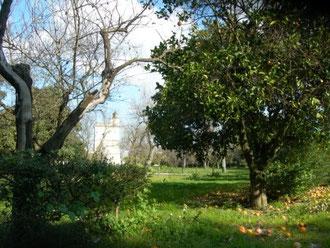 giardino della Torre  Bosco di Capodimonte
