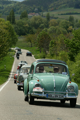Weinrallye 2008 in der Pfalz