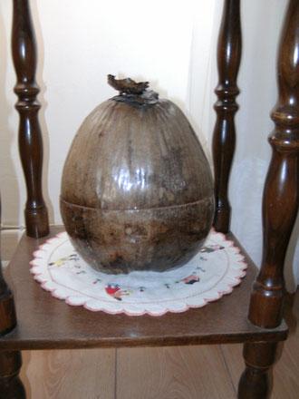 Et pour vous accueillir, voici une très belle noix de coco qui fait office de petite cachette, y ranger ce que l'on veut au choix...