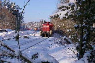 BR 294 mit Containerwagen