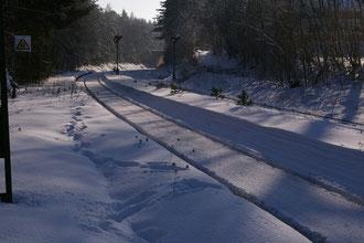 Ende Dezember 2010, der Winter hat Altenschwand fest im Griff
