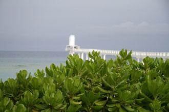 沖縄 風景 海