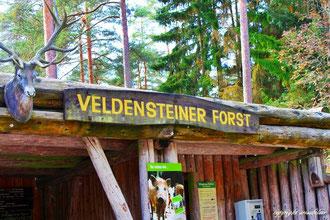 Veldensteiner Forst, Pegnitz