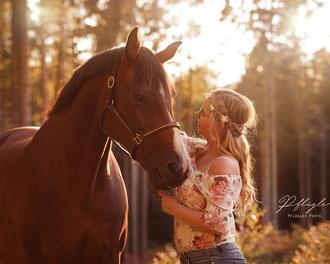Pferdefotografie Schleswig Holstein Mädchen mit Pferd im Wald im Sonnenlicht Abendsonne