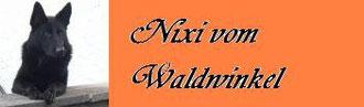 Nixi vom Waldwinkel / Astrid Krüger