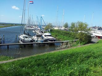 Yachthafen von Andijk, nur wenige Meter entfernt