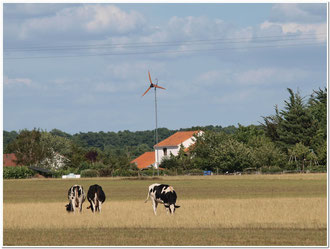 eolienne site isolé