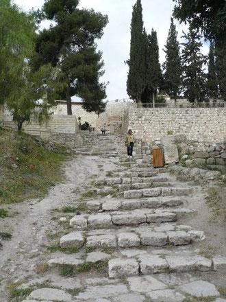 Escalera del Torrente Cedrón