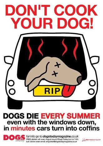 Hunde nicht im Auto lassen!!!
