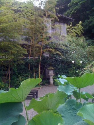 日影茶屋(旧日蔭茶屋)。山にせまった2階のいちばん奥の二十番が大杉栄の定宿でした。