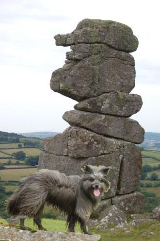 Bowerman's Nose - ein Wahrzeichen vom Dartmoor