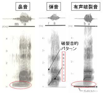 図7 鼻音・弾き音・有声破裂音のスペクトログラム