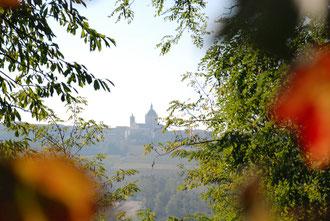 Herbst im Piemont: Blick auf Mombaruzzo