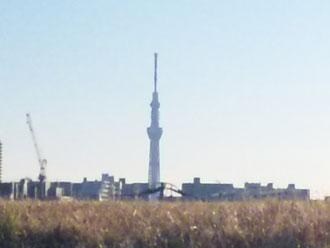 東京スカイツリーもハッキリと!!