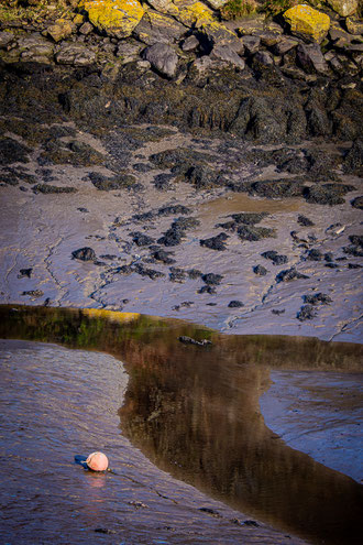 Plouguerneau Aber Vrac'h reflet bleu rocher lichen algues jaune