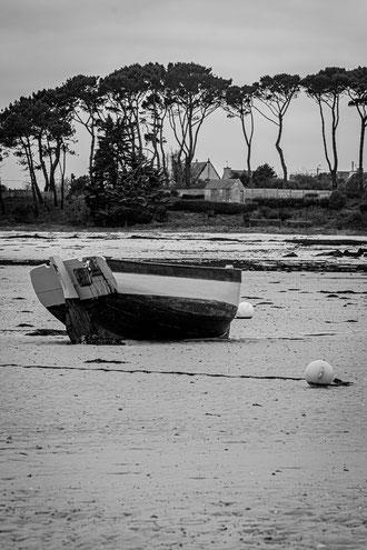 Plouguerneau Grouanec Port barque marée basse plage sable noir & blanc pins parasol
