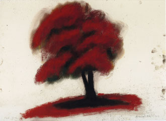 David Nash:  Red Tree, 2012  Pastell auf Papier