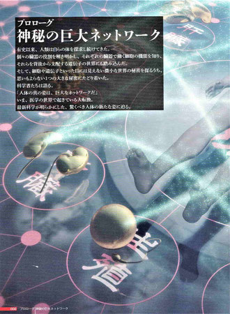 「人体 神秘の巨大ネットワーク」