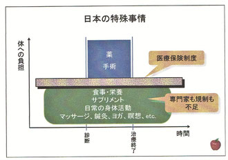 日本の特殊事情(医療保険制度の壁)