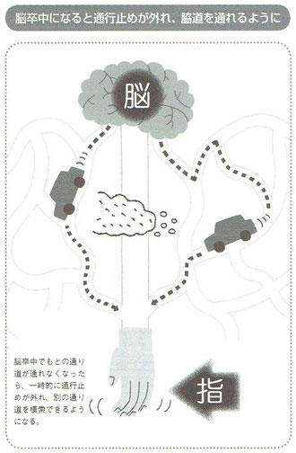 6bc533ae81 そして、今回読んでいる『脳の中の身体地図』の中にも脳卒中の麻痺について書かれた箇所がありました。ここに書かれている内容は脳のリハビリテーションへの理解を  ...
