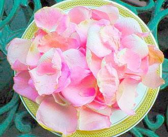 薔薇の花びらをお皿に盛っただけ。後で薔薇風呂にします