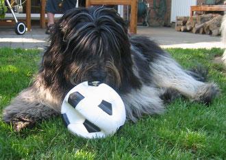 Ich habe dann den Ball im Tor ein wenig BEWACHT. Daher kommt der Name TORWACHT!