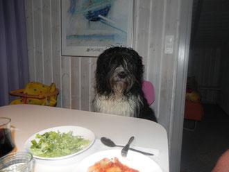 ....und wo ist mein Teller?