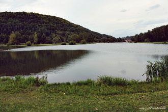 Trebgast See, Trebgast