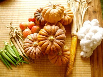 秋の収穫物画像