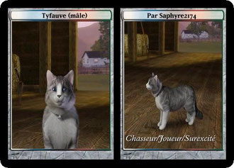 Sims3 animaux chat