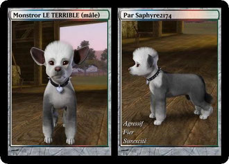 Sims3 animaux chien