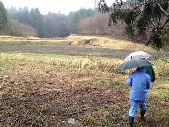 餌場となる、里山と放棄された田園。ここを守るのが目的。