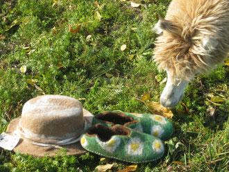 Selbst gefilzte Hüte, Gästepantoffeln etc. von unserer Alpakawolle.