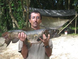 week-end découverte de la nature en guyane: balade en crique