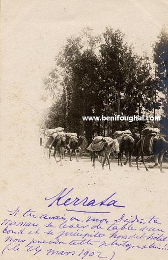 kherrata 1902
