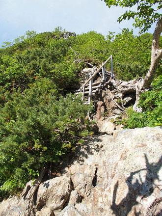 八本歯のコルからの下山は目もくらむような急峻な木製階段が延々と続く。
