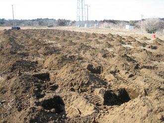 植樹に備え掘られた穴