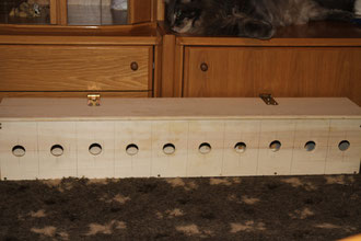 ZOS-Kiste(Cougar muß natürlich wieder alles begutachten)