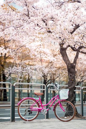 Tester des moyens de transport plus économiques comme le vélo.