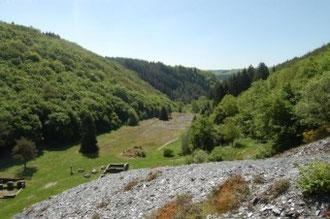 Kaulenbachtal