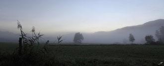 Brumes matinales à Herretang