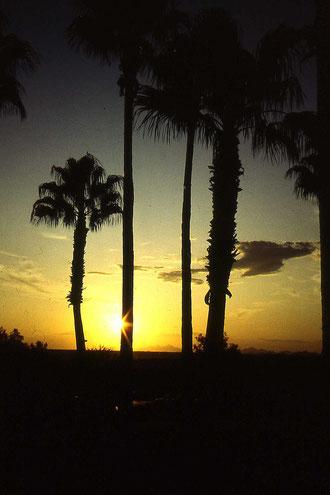 Abendstimmung in L.A. (California)