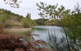 loisirs-nature-détente-pique-nique-famille-forêt-buzet-tarn