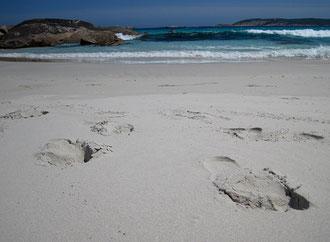 Fredis Spuren im Sand