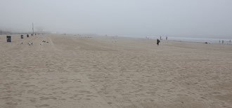 Venice Beach in der Nebelsuppe