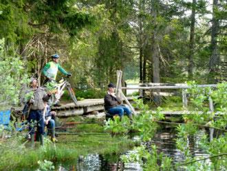 baigner dans la natur, pêcher